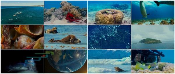 Screenshot_Oceans.Our.Blue.Planet.2018.720p.BluRay..mkv_www.download.ir