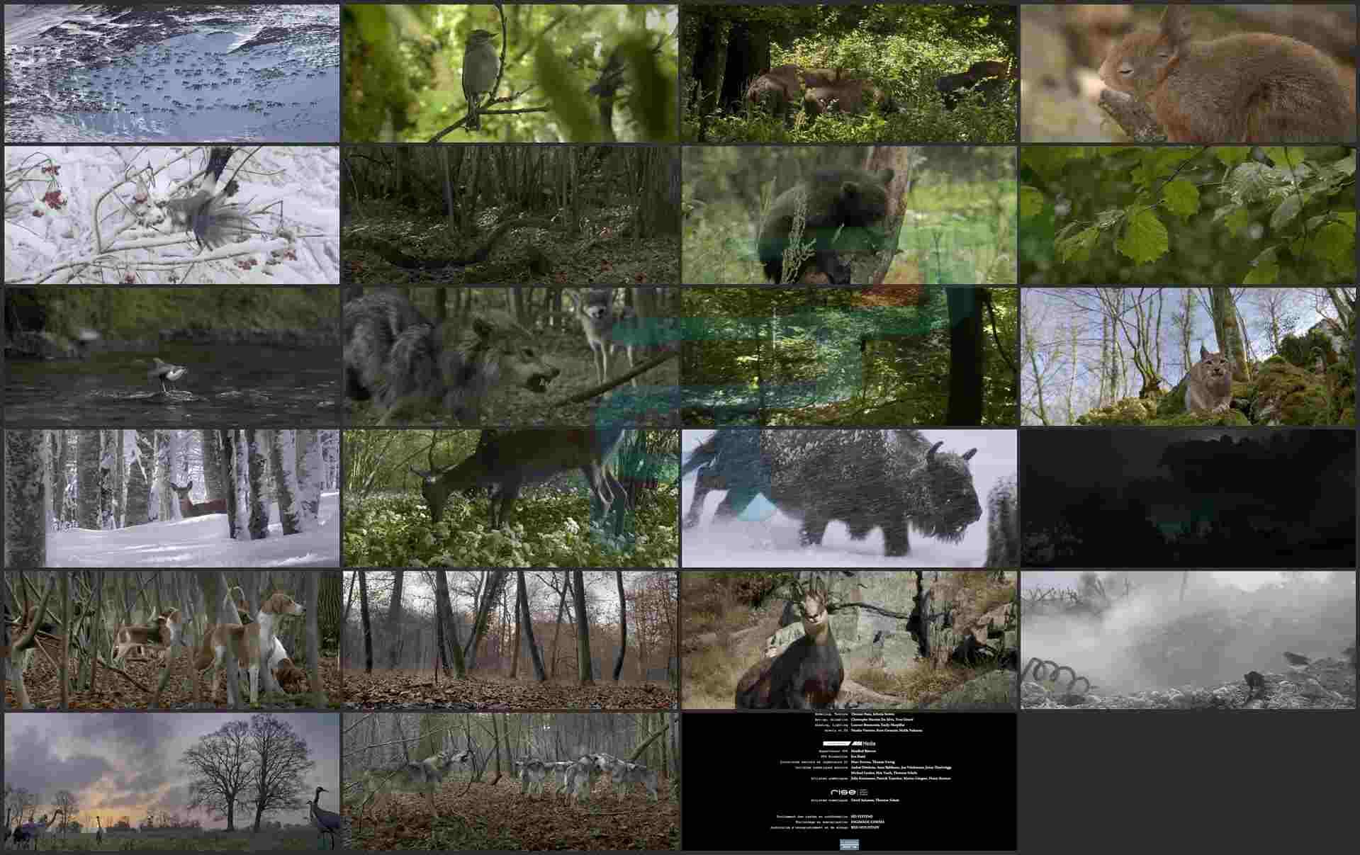 Seasons_2015_720p_BluRay_Download.ir.mkv (Copy)