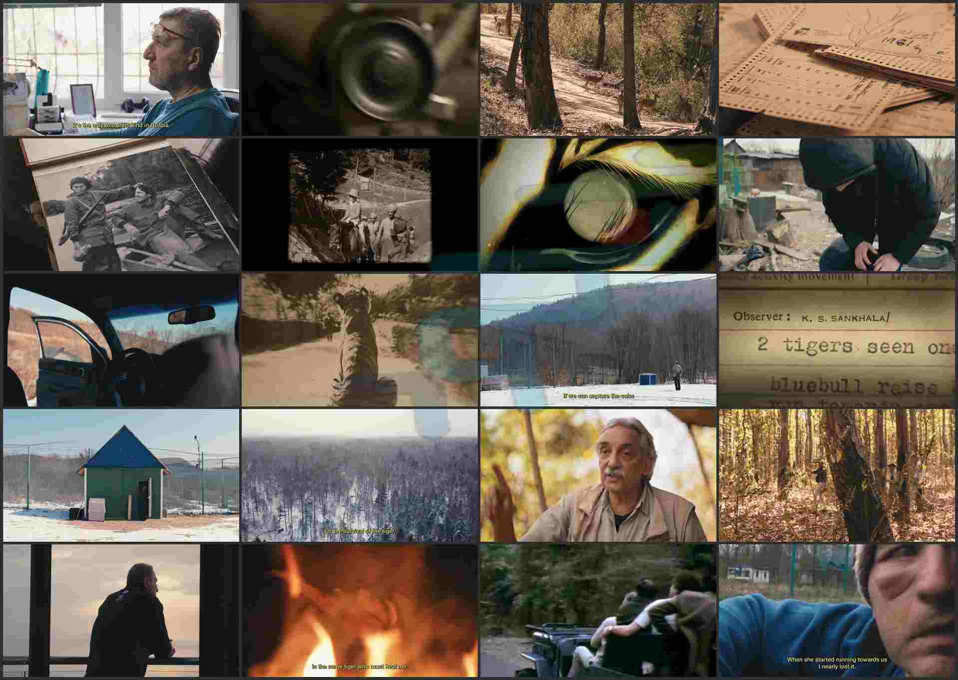 Tigerland_2019_720p__Download.ir.mkv (Copy)