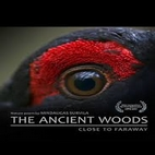 logo_The.Ancient.Woods.2017_www.download.ir