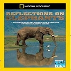 www.download.ir_reflection of elephants logo