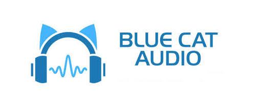 Blue.Cat.Audio.Blue.Cats.Protector.center عکس سنتر
