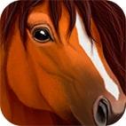 بازی Horse Simulator
