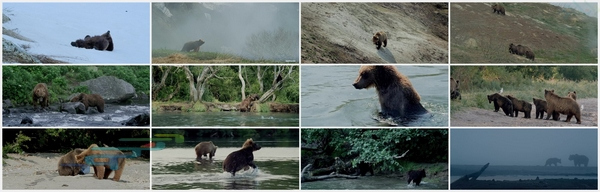 Land_of_the_Bears_2014_720p_Farsi_Dubbed_www.download.ir