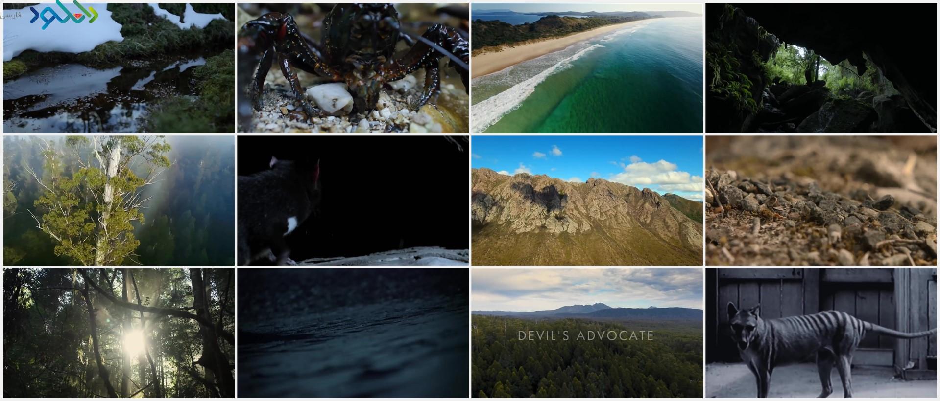 Screenshot_Tasmania.Weird.and.Wonderful_www.download.ir