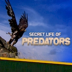 logo_Secret.Life.of.Predators_download.ir