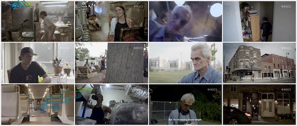 screenshot_Dishwashers.Dish.pig.kitchen.mp4_www.download.ir