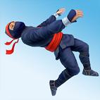 Ninja-Flip-لوگو