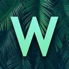Word-Vines-لوگو