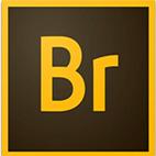 دانلود نرم افزار Adobe Bridge CC 2020