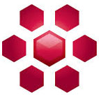 FEI.Amira.logo عکس لوگو
