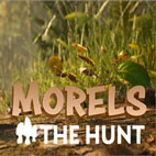 Morels-The-Hunt-لوگو-بازی