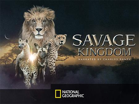 پادشاهی وحشت (مستند)
