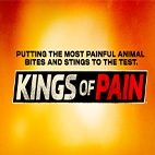Kings-of-Pain-logo