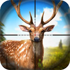 Hunting Fever