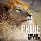 Pride-Rulers-at-Risk-logo