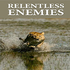 Relentless-Enemies-logo