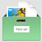 Tidy-Up-v5.3.1-Logo