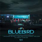 Bluebird-logo