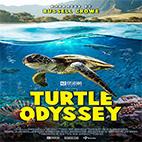 Turtle-Odyssey-logo