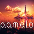 P.A.M.E.L.A-Logo