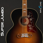 Ample-Sound-Ample-Guitar-Super-Jumbo-LOGO