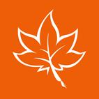 MindMaple-Classic-logo