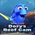 Dory's Reef Cam 2020-logo