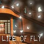 Life of Fly-logo