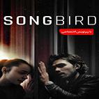 Songbird 2020-logo