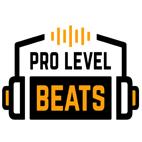 دانلود فیلم آموزشی Prolevelbeats Pro Level Beats by Simon Servida