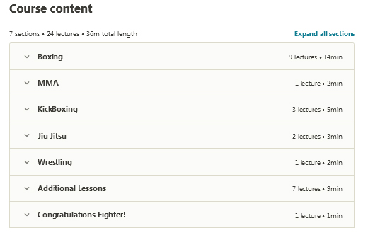 Udemy-Learn-MMA-Fighting-Techniques-at-Home-With-Zero-Knowledge-screen