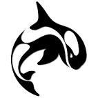 Orca3D