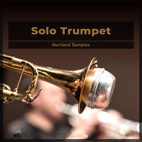 Norrland Samples Solo Trumpet